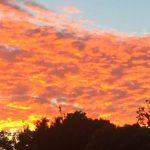 Sunset, Sunnyvale, California
